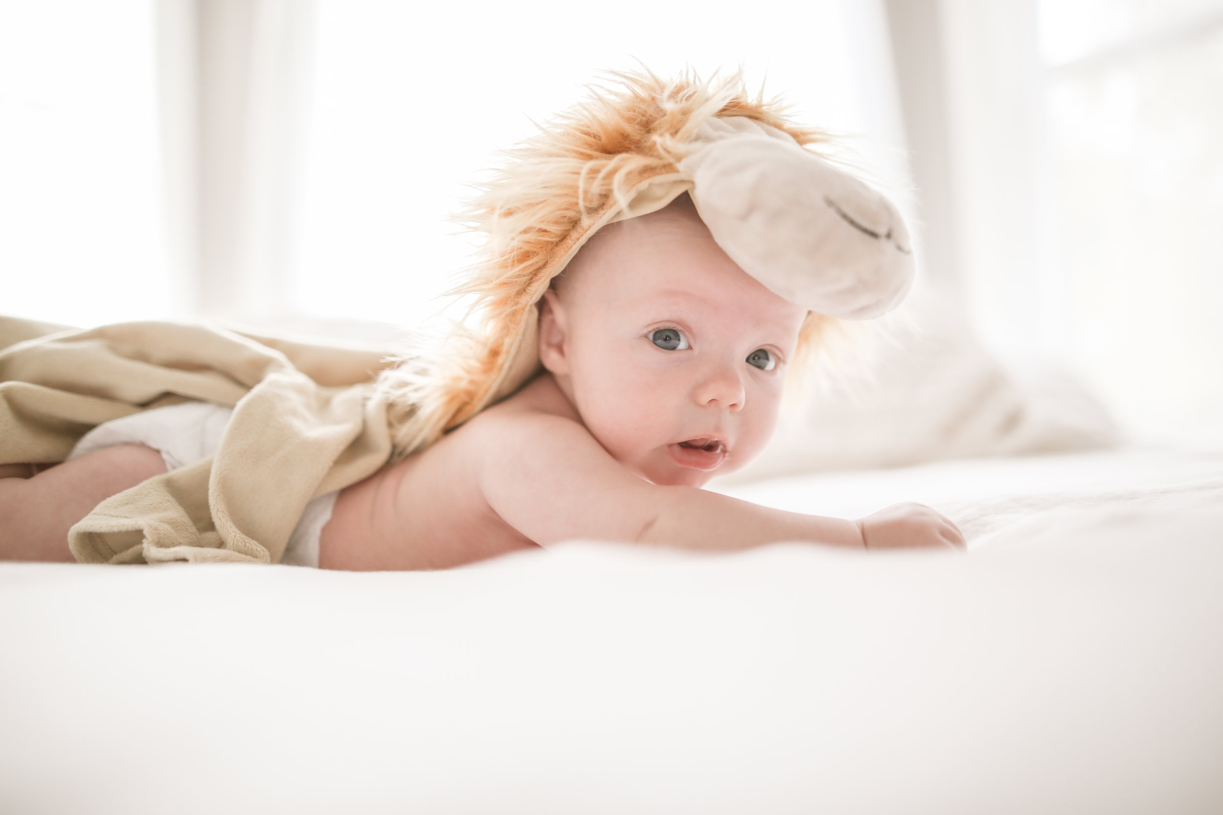 chicago lifestyle baby photographer jenny grimm