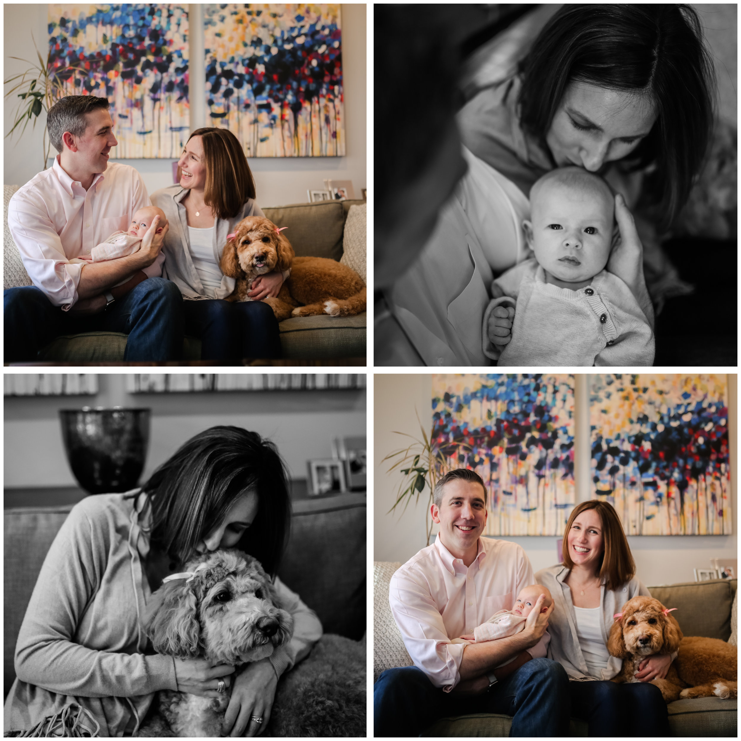 lincoln park family lifestyle photographer jenny grimm photography