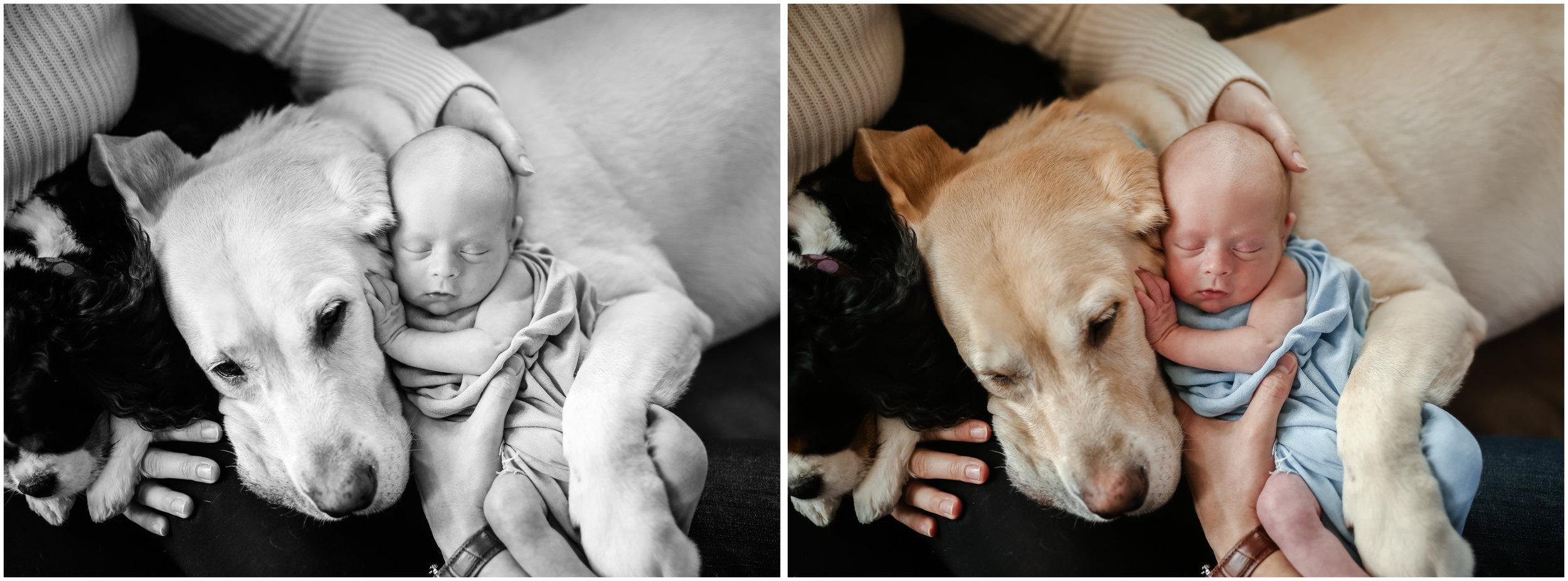 chicago jenny grimm photographer newborn lifestyle family photography