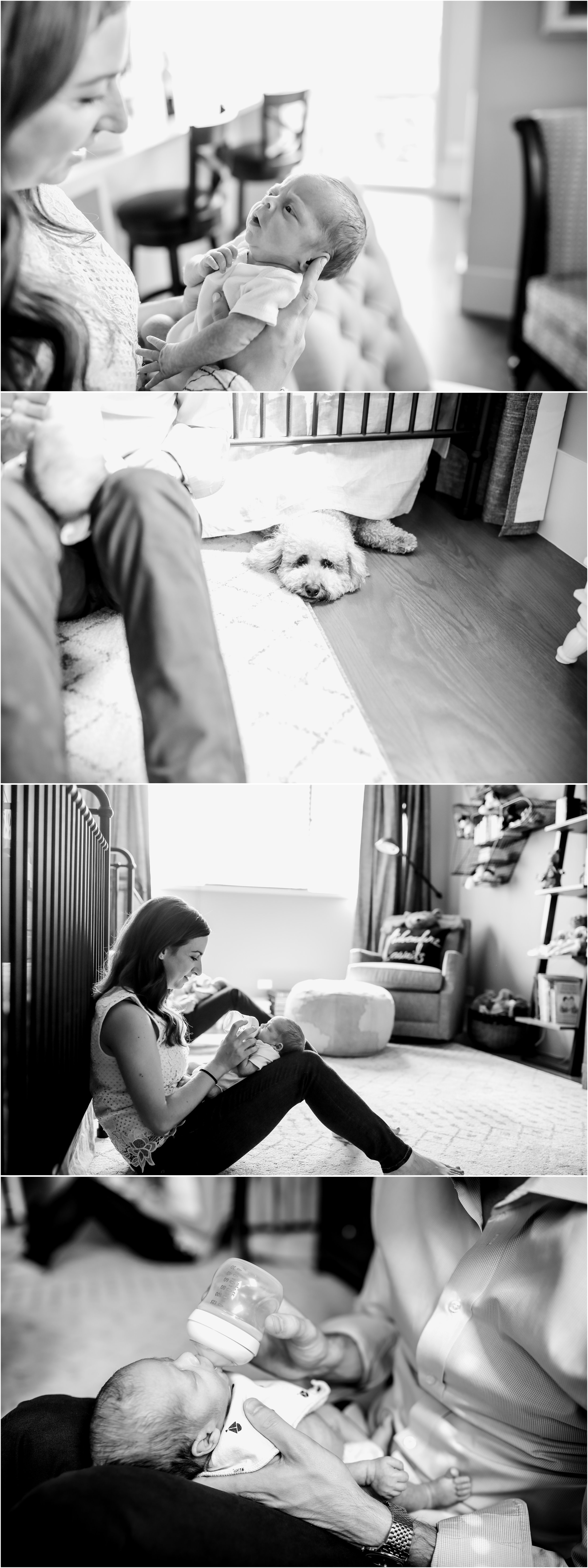 chicago newborn twin boys lifestyle in home session jenny grimm photography