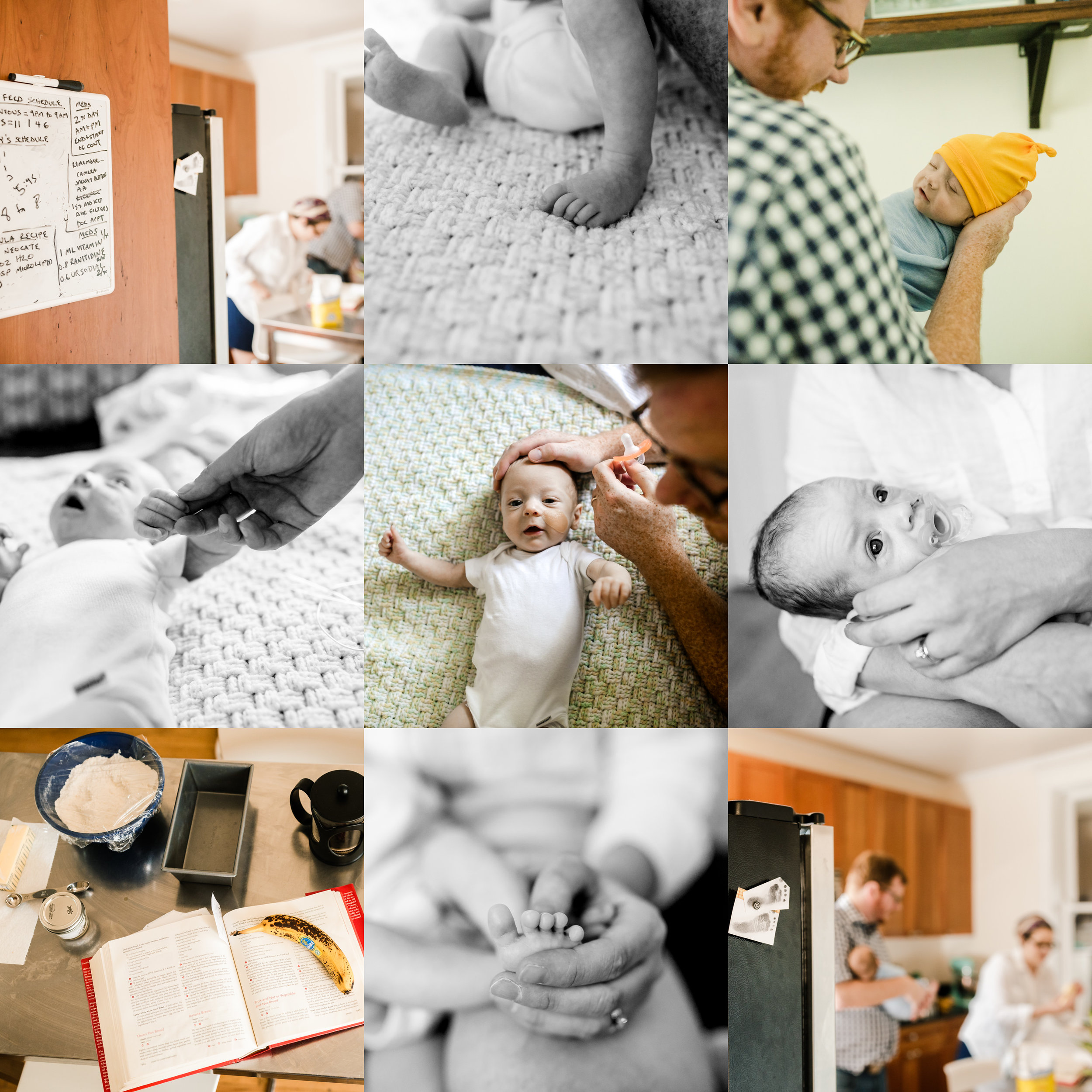 chicago newborn lifestyle home photographer jenny grimm photography