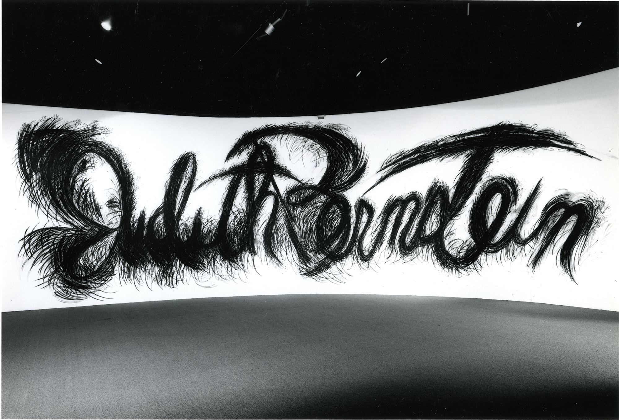 Judith Bernstein's Signature Piece - 1986