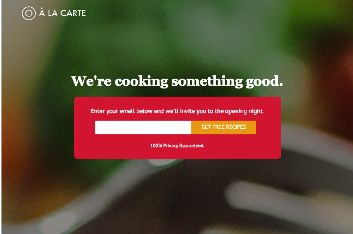 An example of a pre-launch landing page.
