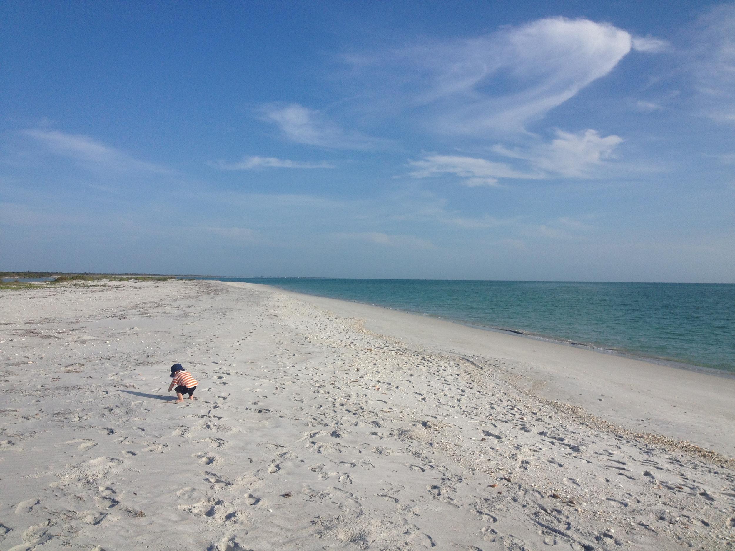 The beach at Cayo Costa