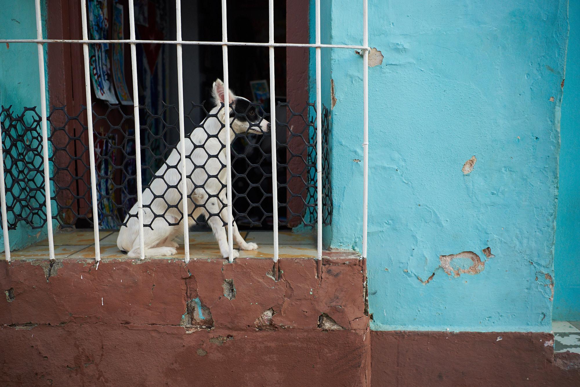 18-01-12-Cuba_2844Web.jpg