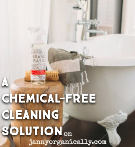 A Chemical-Free Cleaning Solution - janny: organically.