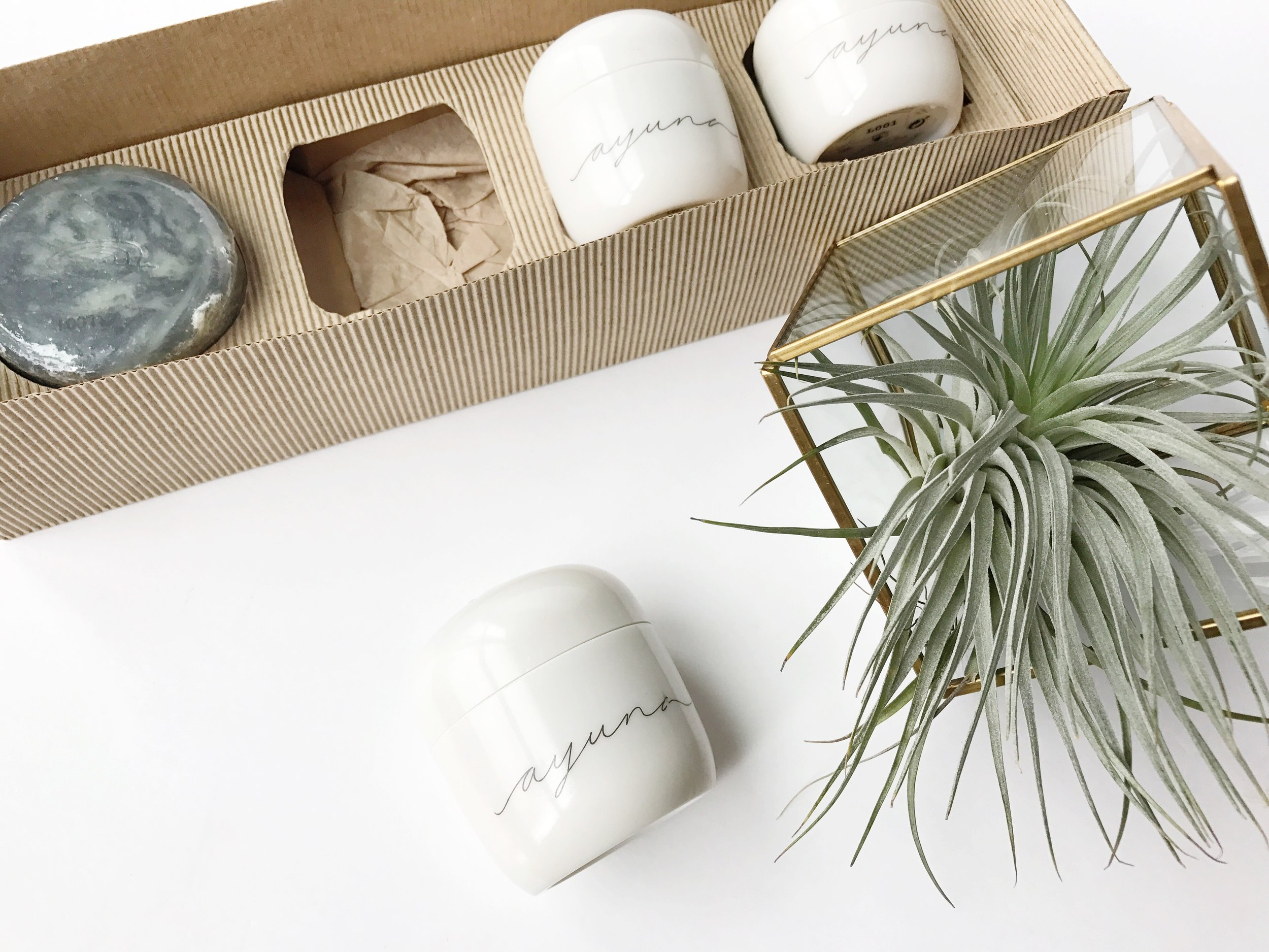 AYUNA Skincare and the Science Behind Topical Fasting | janny: organically.