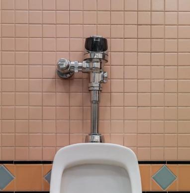 CASE STUDY SLOAN toilet .png