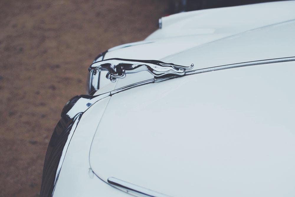 jaguar-vintage-car.jpg