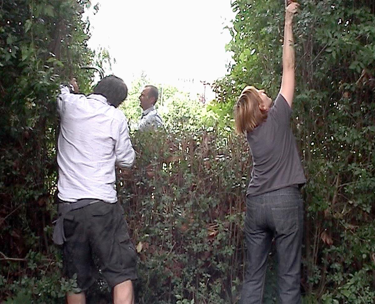 Felix s window , 2009 Still from video