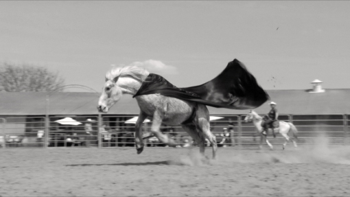 Emmanuel Le Cerf Still from Bronco , 2010 Black and white video, loop Edition of 3 + 1 AP