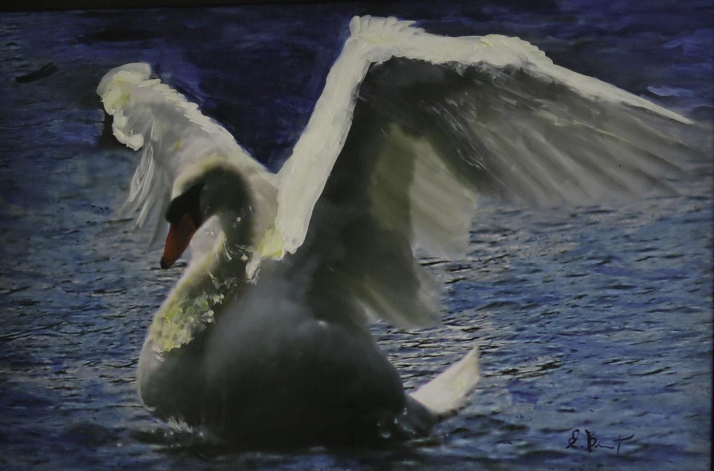 Swan dance (,ixed-media)