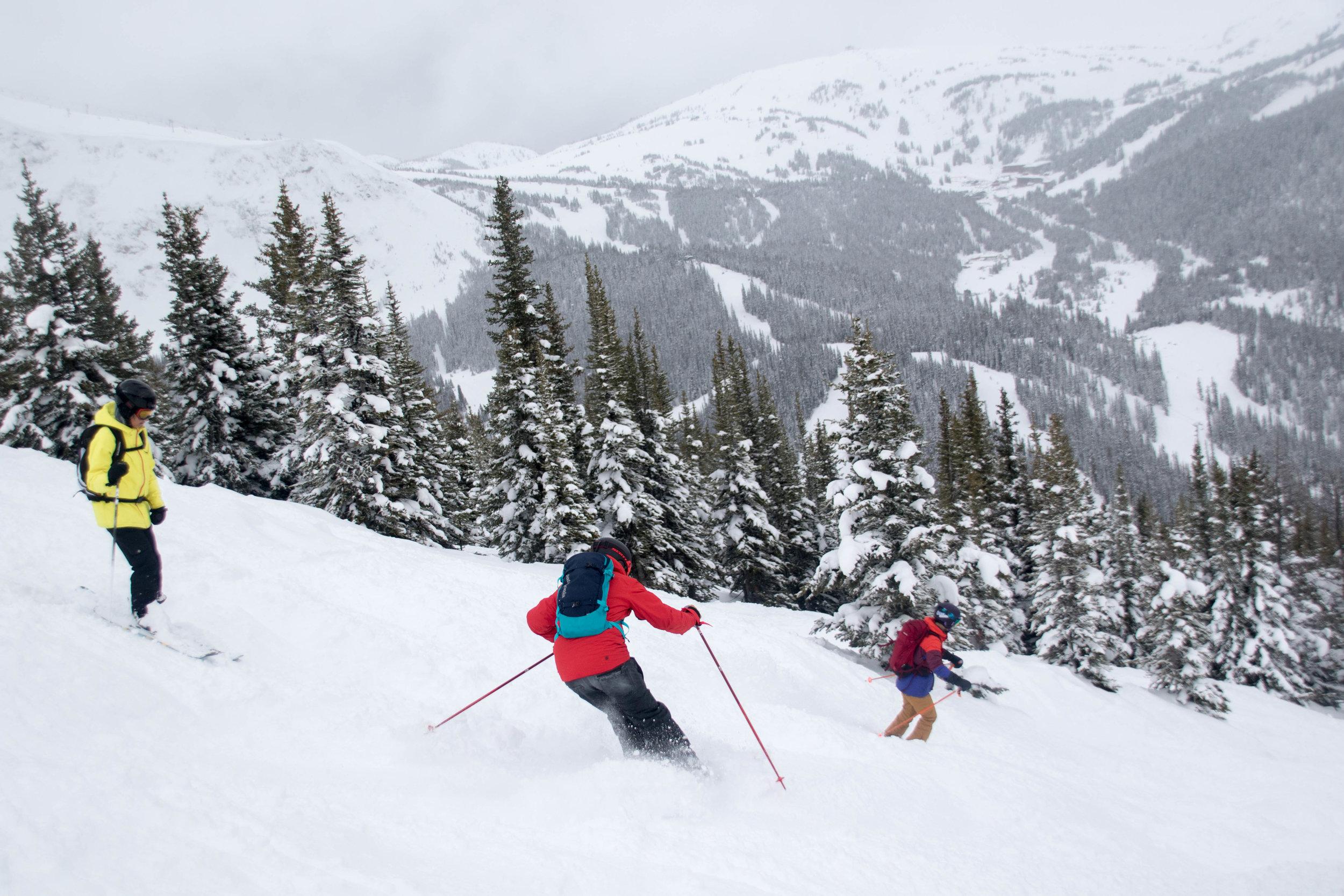 skier intermidiate (4).jpg