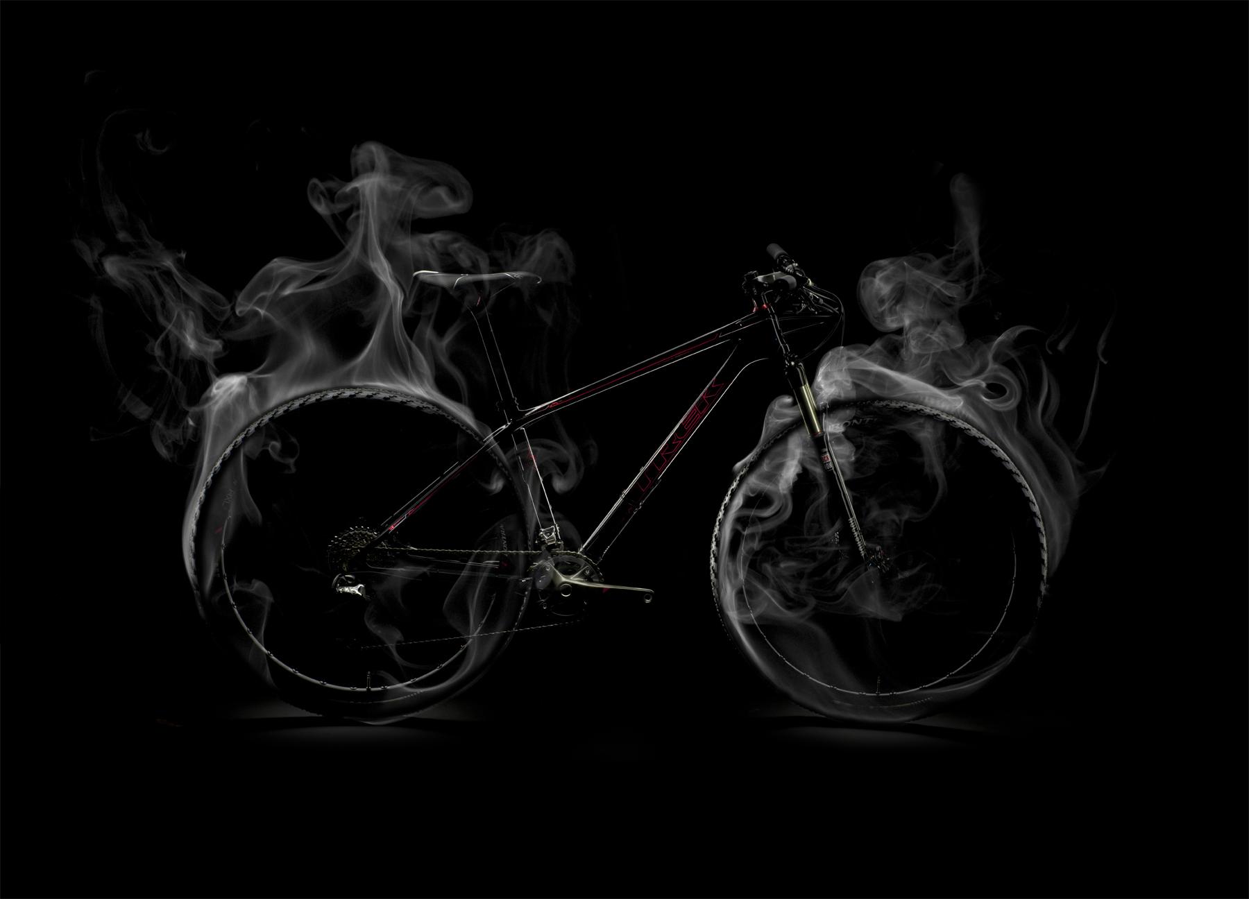 Smokey_Profile.jpg