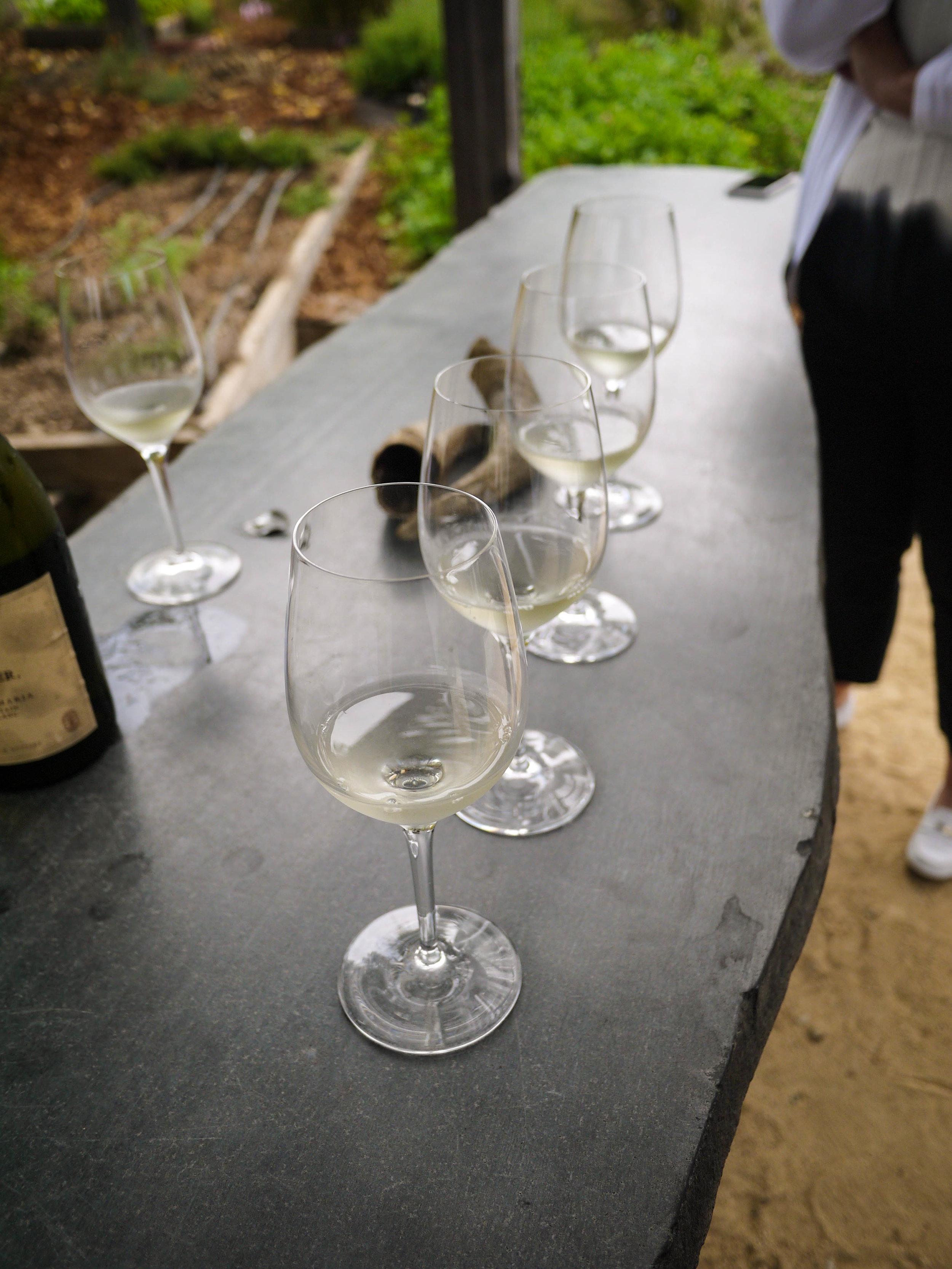 This winery focused on biodynamic wines