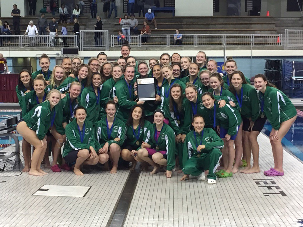 2016 Class AA Girls Swimming and Diving True Team State Champions  Edina