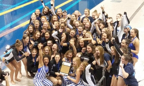 2018 Class AA True Team State Champion  Minnetonka   Results