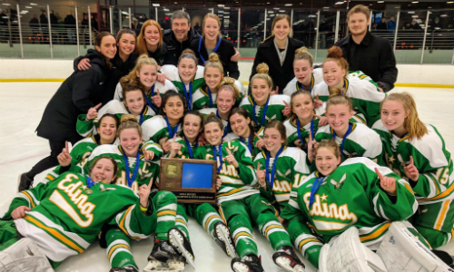 #1 Edina | Section 6AA Champion    Roster  |  Schedule / Results  | Website |  Media Guide    Team Twitter  |  School Twitter  |  Students Twitter  | Team FB |  School FB  |  Instagram    Star Tribune Story  |  KSTP Video   Quarterfinal result:  W, 7-0  vs. East Ridge  Semifinal result:  W, 2-1  vs. Minnetonka