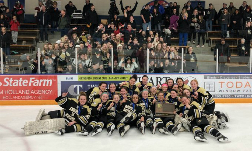 #2 Andover | Section 7AA Champion    Roster  |  Schedule / Results  |  Website  |  Media Guide    Team Twitter  |  School Twitter  |  Students Twitter  | Team FB |  School FB    Star Tribune Story  |  KSTP Video   Quarterfinal result:  W, 7-1  vs. Farmington  Semifinal result:  L, 2-3  vs. Brainerd/Little Falls
