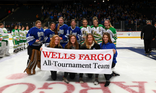 2018-19 Girls Hockey Class AA All-Tournament Team    Names of team members    Photo Credit:    MN Prep Photo