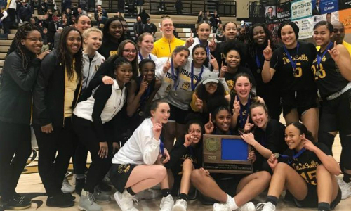 #1 DeLaSalle | Section 4AAA Champion    Roster  |  Schedule / Results  |  Website  |  Media Guide    Team Twitter  |  School Twitter  |  Students Twitter  | Team FB |  School FB   Quarterfinal result:  W, 61-53  vs. Hibbing  Semifinal result: 61-59 win vs Holy Angels -  Box Score  |  KSTP Video