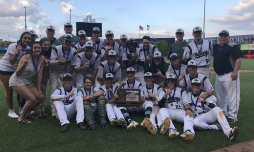 #4 Mounds View   | Section 5AAAA Champion    Roster  |  Schedule / Results  |  Website  |  Media Guide    Team Twitter  |  School Twitter  |  Students Twitter  | Team FB |  School FB   Quarterfinal: Lost 5-9 vs. East Ridge |  Box Score   Consolation Semifinal: Won 11-6 vs. Eden Prairie |  Box Score