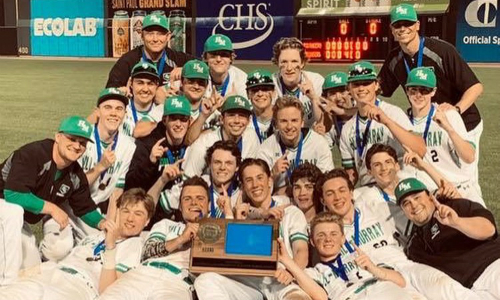 #2 Hill-Murray | Section 4AAA Champion    Roster  |  Schedule / Results  |  Website  |  Media Guide   Team Twitter |  School Twitter  | Students Twitter |  Team FB  |  School FB   Quarterfinals: Lost 1-3 vs. Austin |  Box Score   Semifinal: Won vs. Little Falls 6-5 |  Box Score