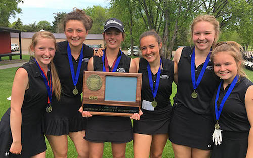 Brainerd | Section 8AAA Champion   State Tournament Roster:  Abby Pohlkamp (SR) ,  Alexis Menghini (SR) ,  Anna Krieger (SO) ,  Ellie Bymark (SR) ,  Izzy Olson (FR) ,  Katie Foley (FR)   Team Twitter |  School Twitter  |  Students Twitter  | Team FB |  School FB