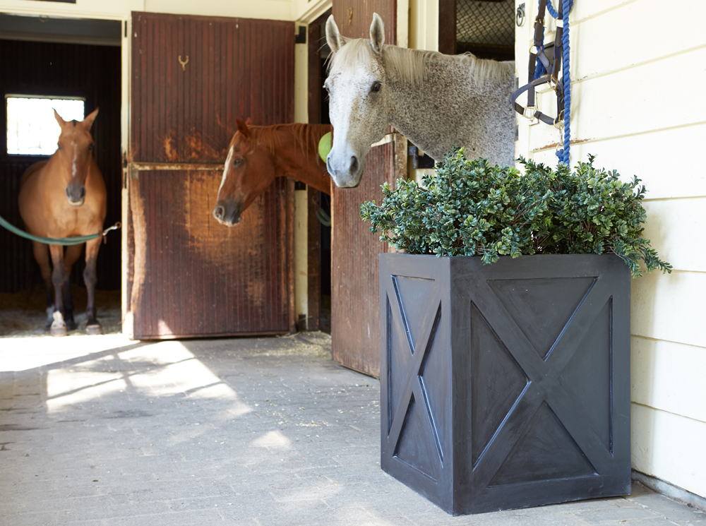 dutch door planter in stable.jpg