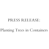 Planting trees in a container.jpg