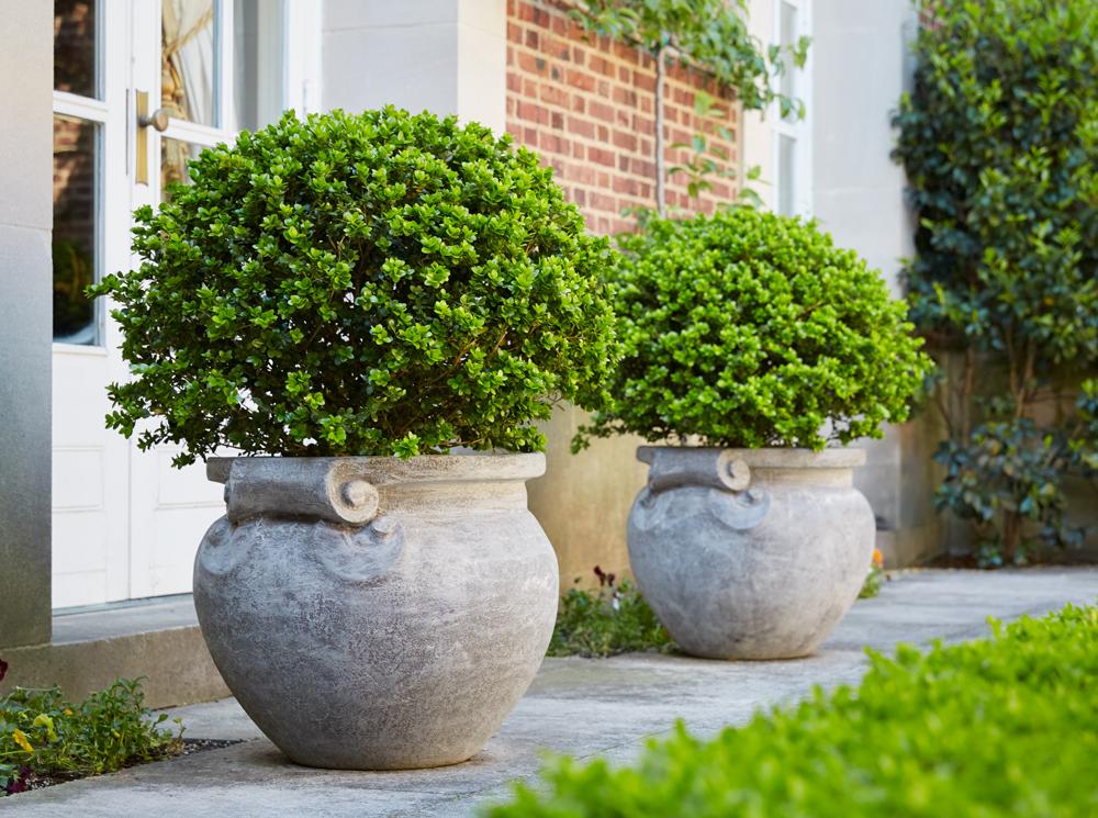 olive jars.jpg