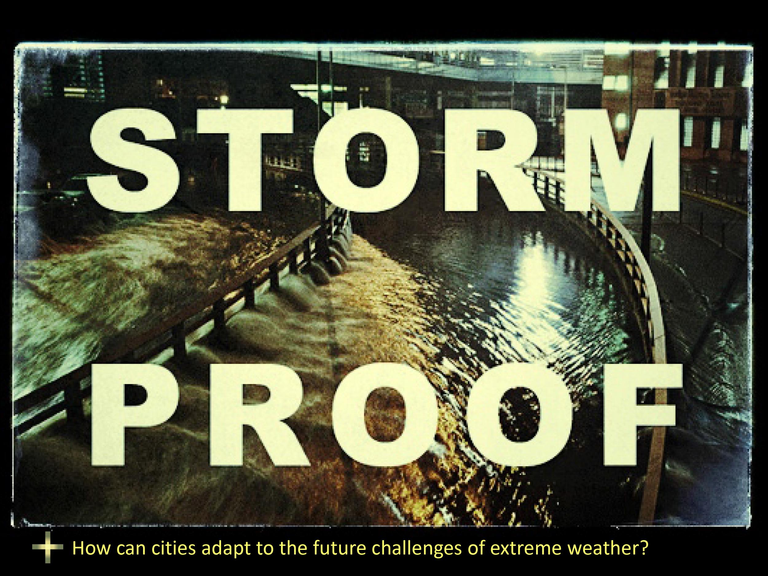 stormProofSalon2-2.jpg