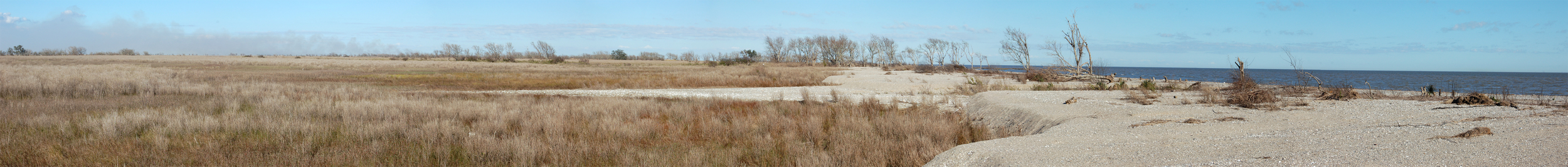 Marsh to Beach at Mouts.jpg