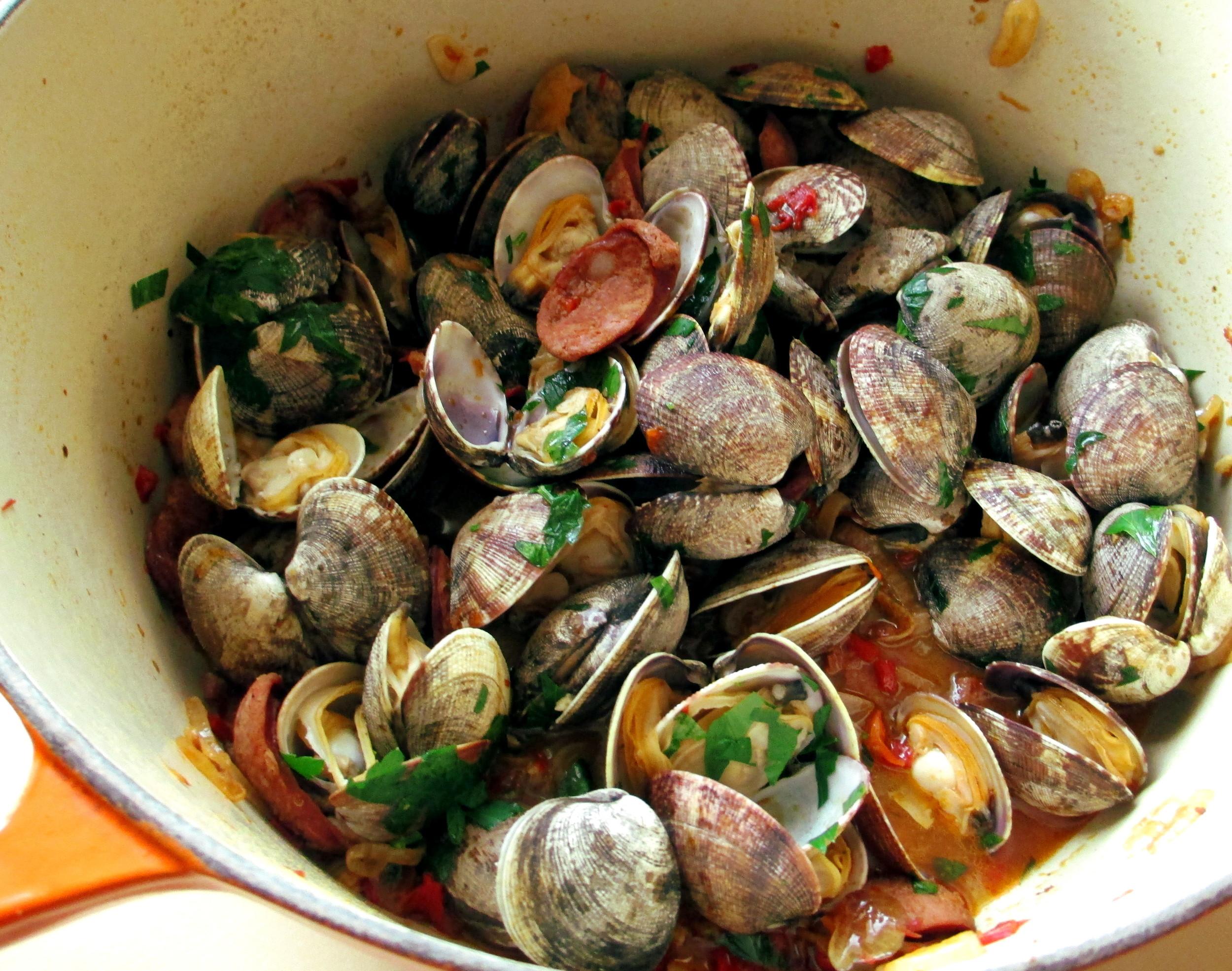 manila clams 2