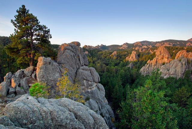 Black Hills National Forest. South Dakota/Wyoming