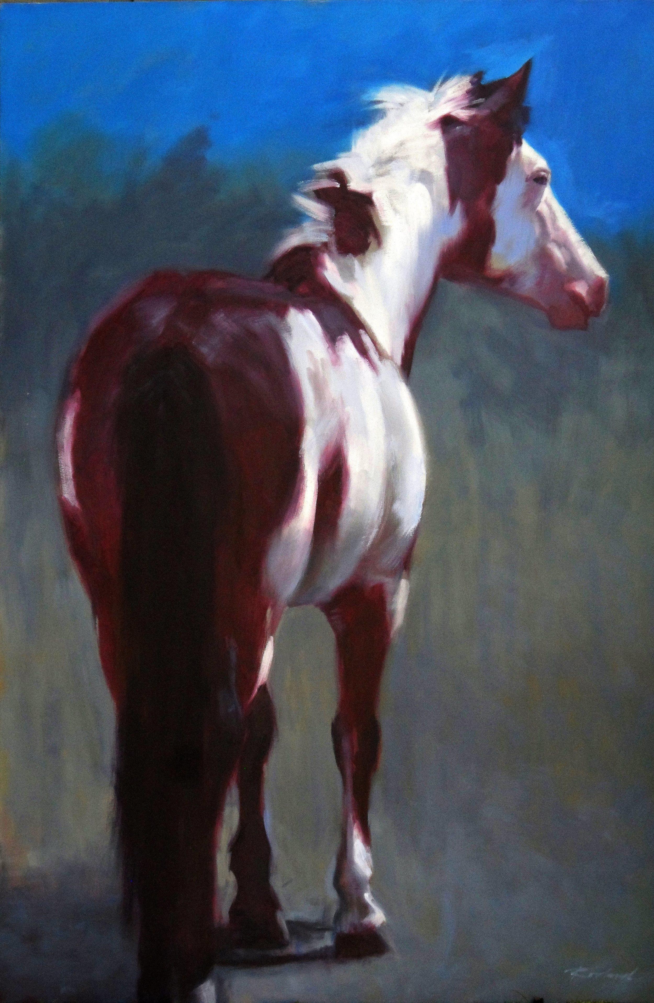 Moonlight Mustang_Edited_0001_Edited_Converted.JPG