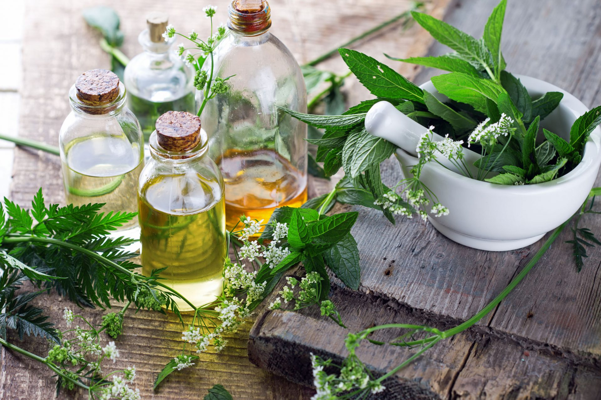 Herbalism-Western.jpg
