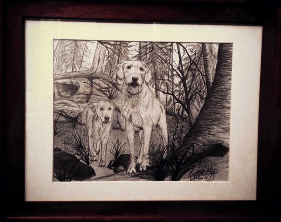 BRUCE AND BAILEY    This was a drawing I did for a friend's 50th birthday. The subjects are Bruce and Bailey,the beloved family pooches. The drawing was adapted from a photo taken at their family cottage in Parry Sound, which is by far this furry duo's favourite place to be.