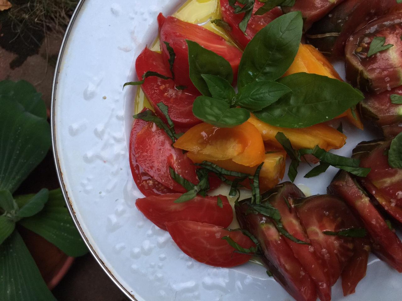 Tomato taste test: black prince heirloom is my favorite.