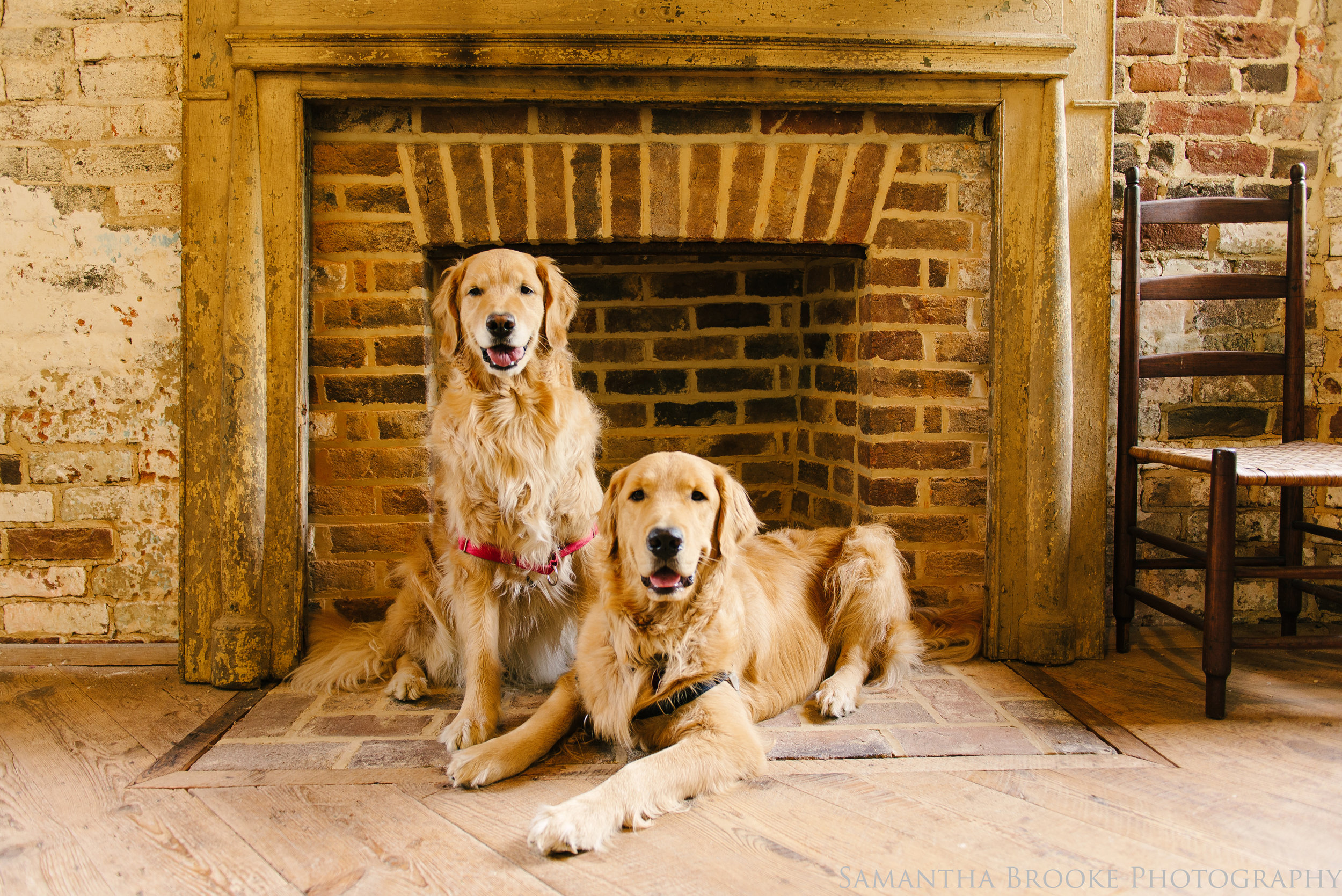 Koa and Aspen sit inside one of the fireplaces at historic Aldie Mill.