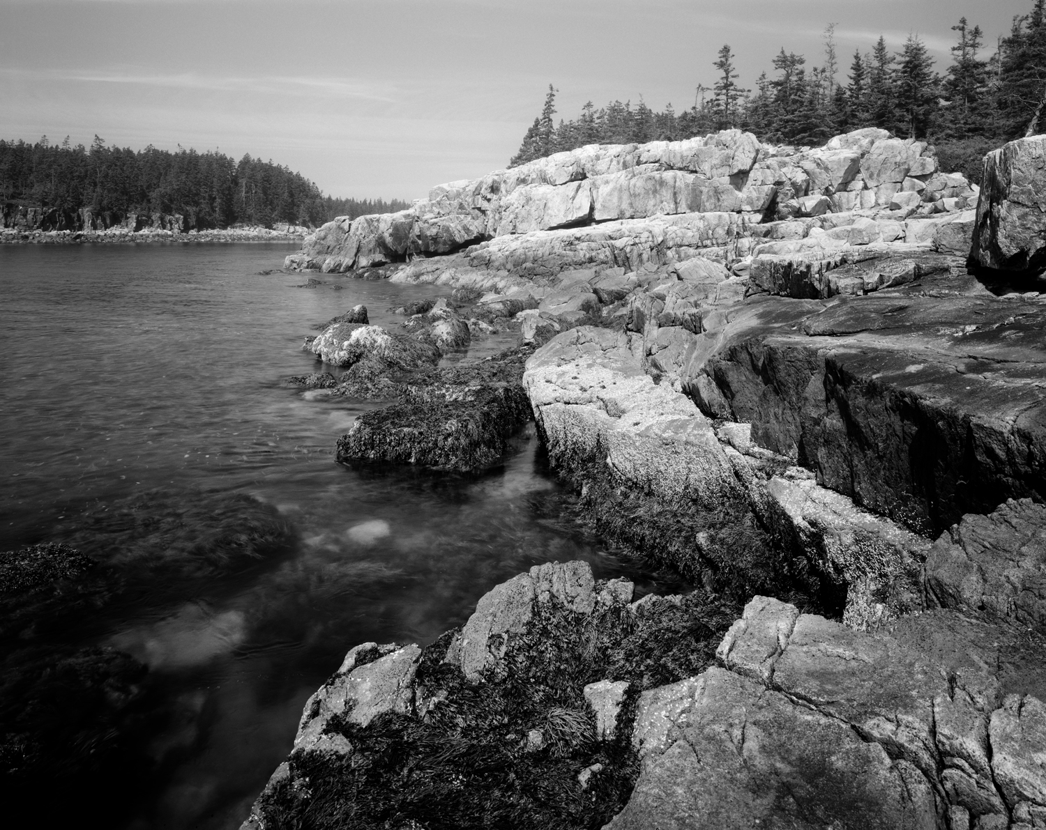 Ship Harbor Inlet. Acadia National Park, Maine. 2011