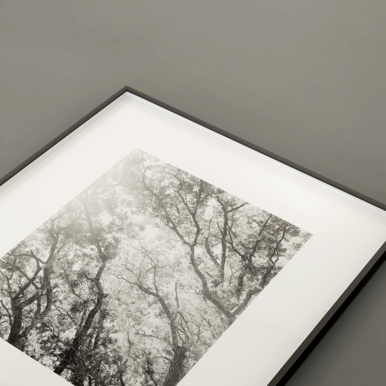 "Live Oak I in 16x20 on 26x30 Graphite Grey frame with 1/2"" frame spacing."
