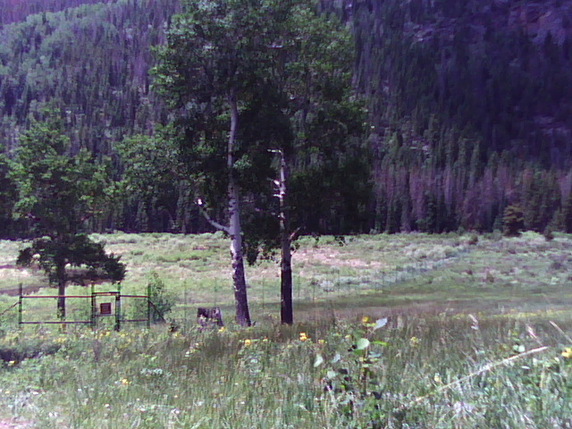 """Frame 0162"". First landscape. Rocky Mountain National Park, CO. 2011"