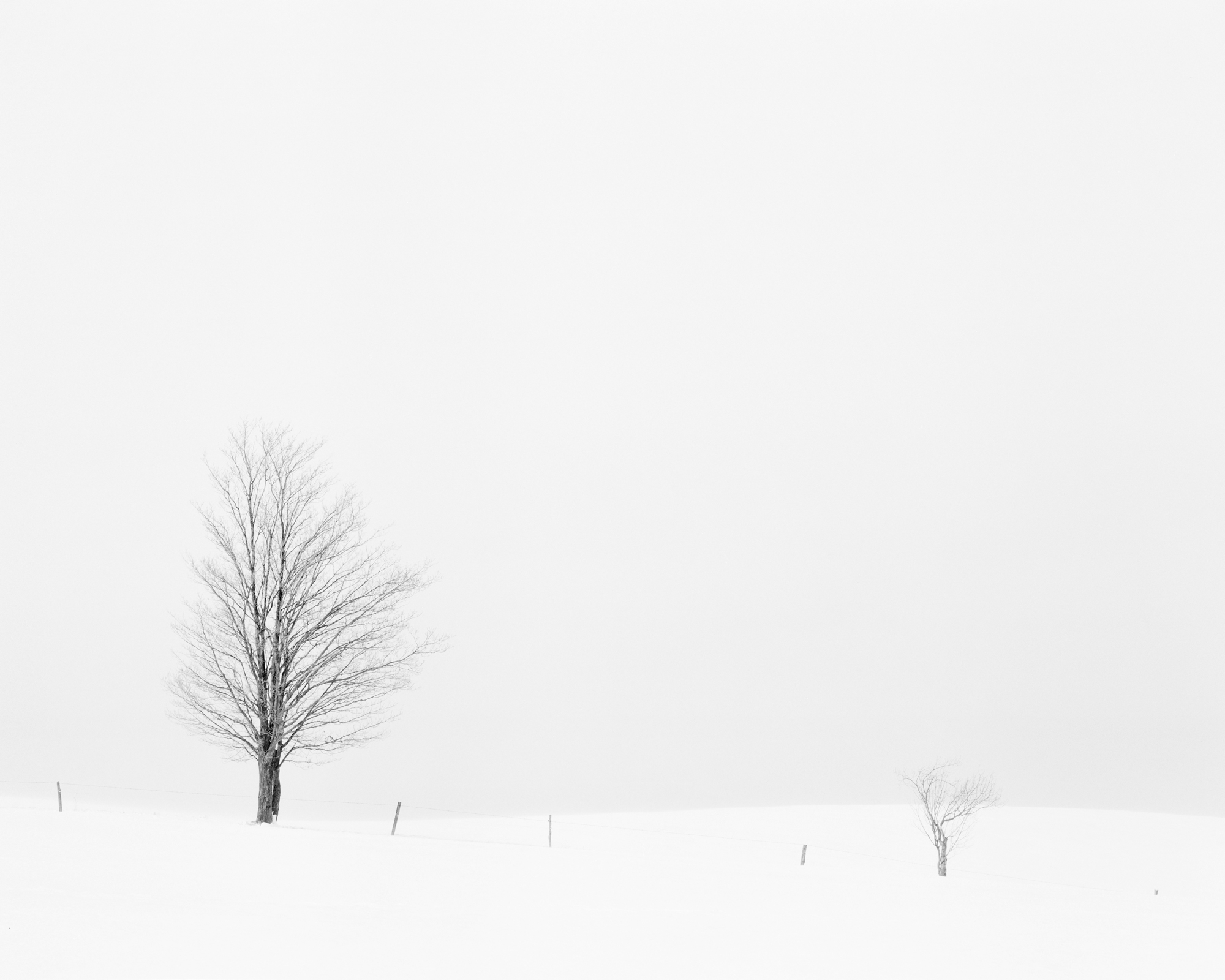 SNOW STUDY I