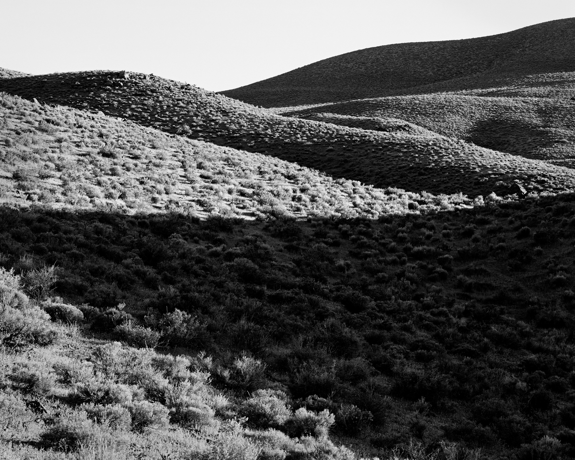 Owens Valley No. 5