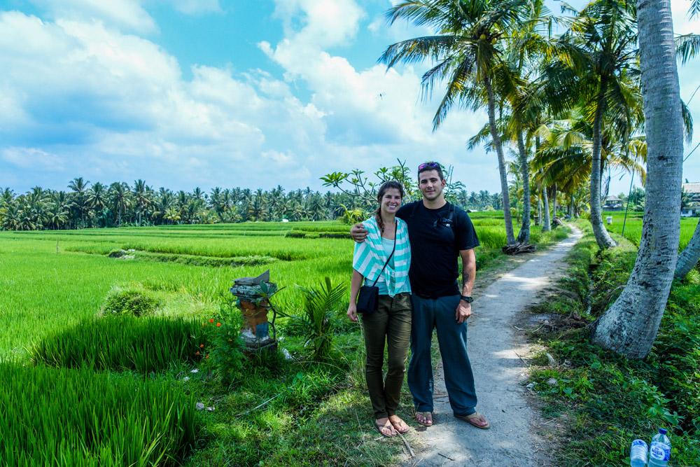 Ubud rice terrace.
