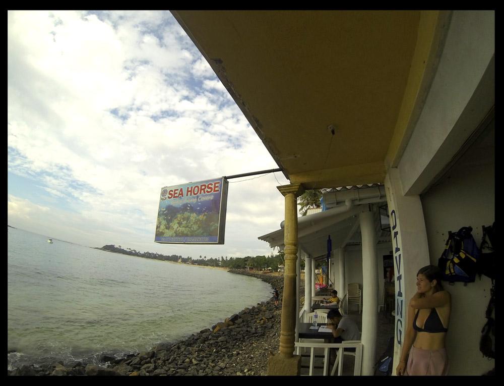Sea Horse Diving Center.