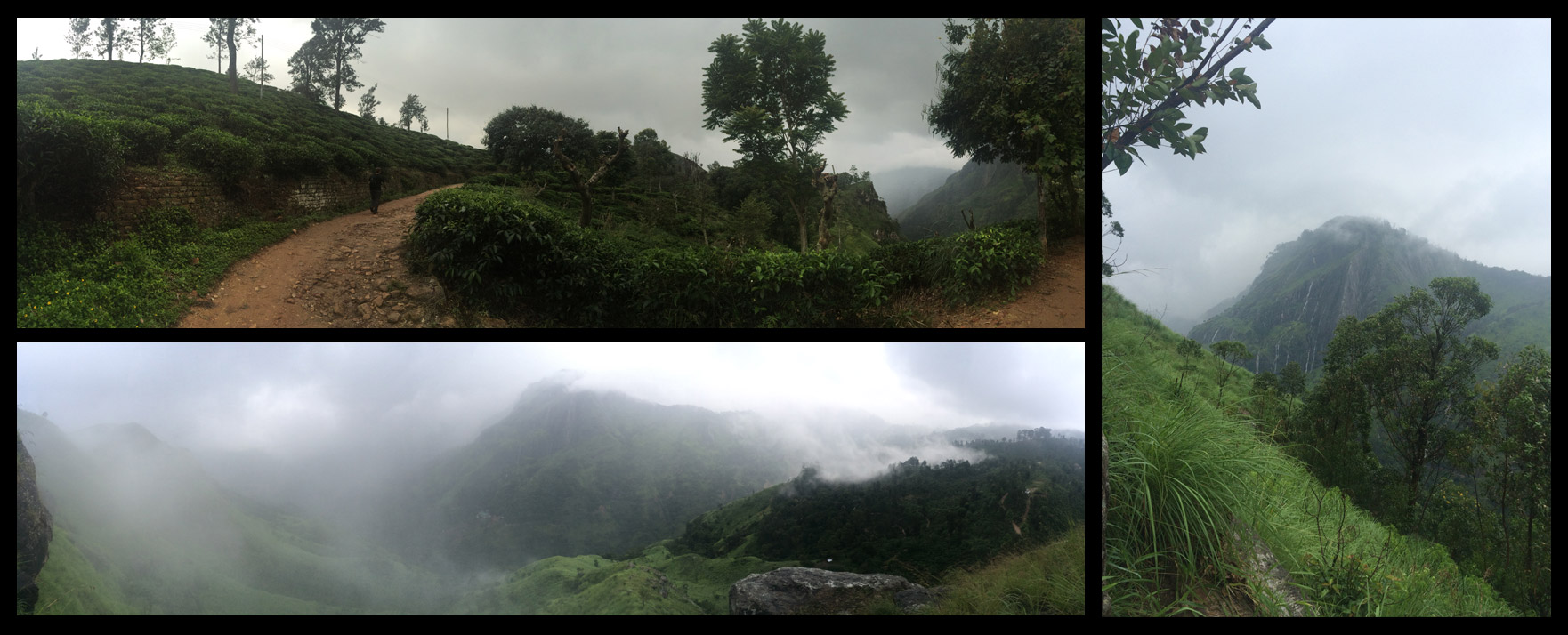 Views from Little Adam's Peak! Top left picture is a path through a hillside tea plantation.