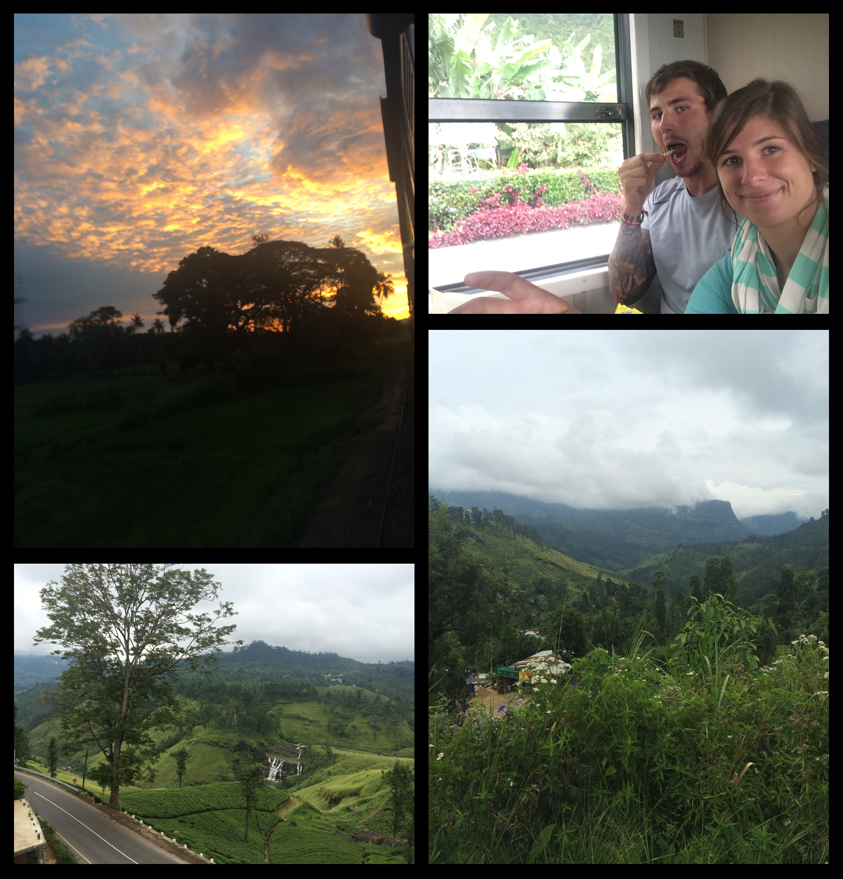 Some views from the million hour train ride!