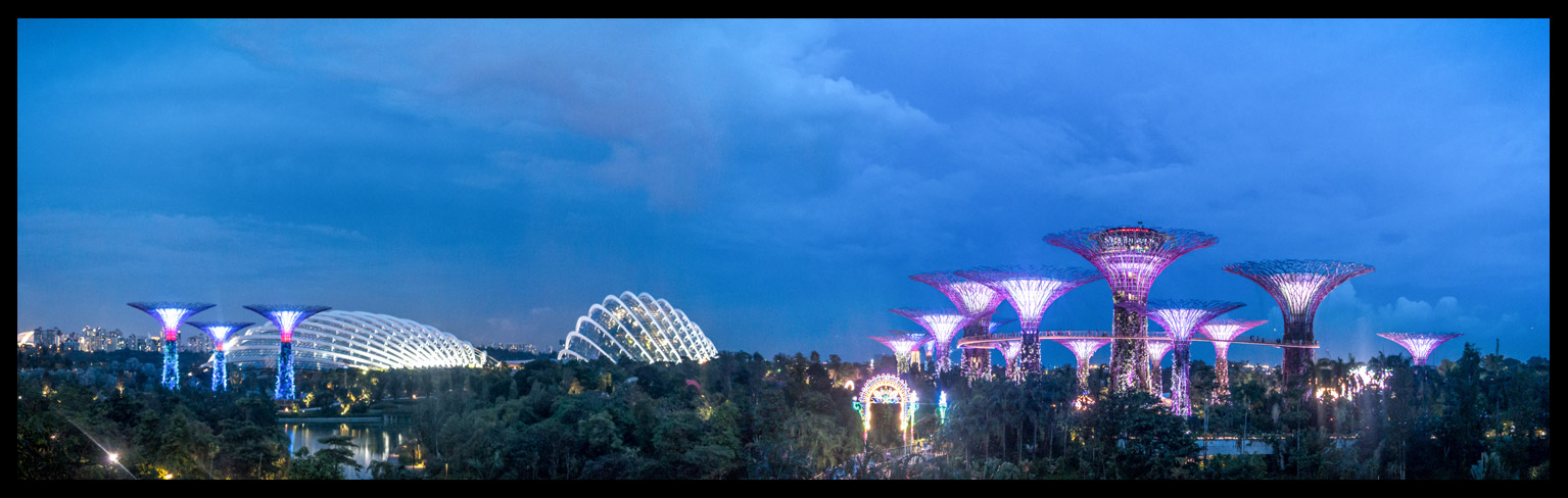 Gardens By the Bay- Supertree Grove